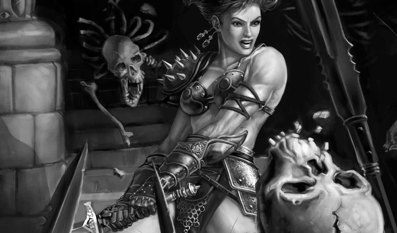 белое, чёрно, neverwinter, nights, warrior, girl, artwork, những, đẹp, người, игры,
