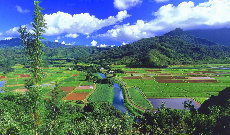 гавайские, острова, hawaii, горы, эти, можно, ауди, совершенно, поток, свой,