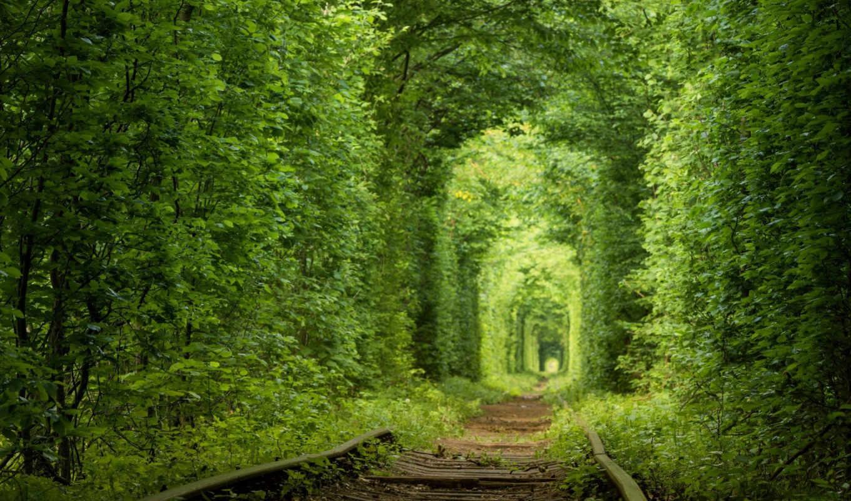 , дорога, железная, зелень,
