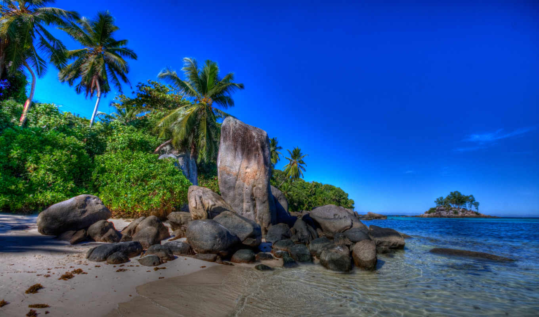 море, природа, природы, пляж, summer, landscape, пальмы, небо, летом,