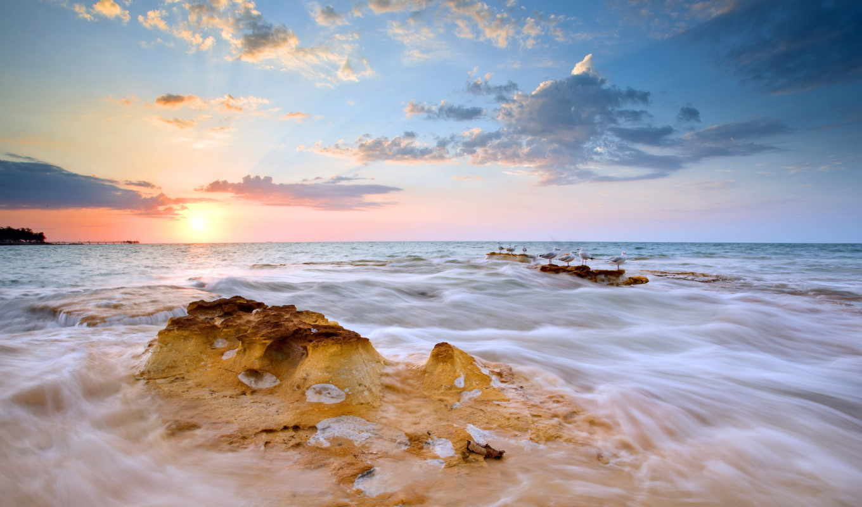 птицы, seascape, море, possible, served, ultimate, are, desktop, июнь, закат, resolution,