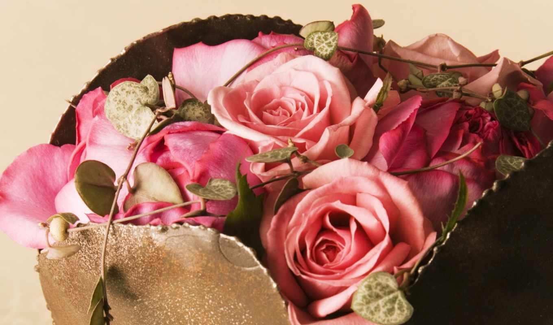 cvety, розы, красавица, roses, фоны, ноты,
