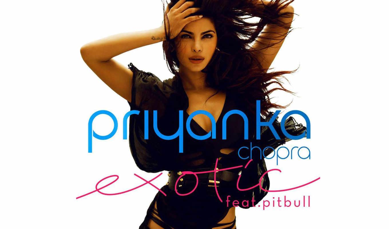 exotic, pitbull, priyanka, chopra, feat, single,