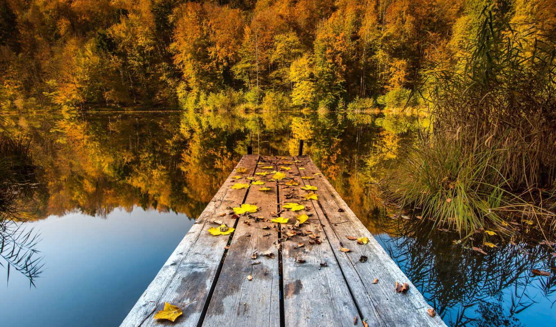 озеро, осень, мост, природа, листья,