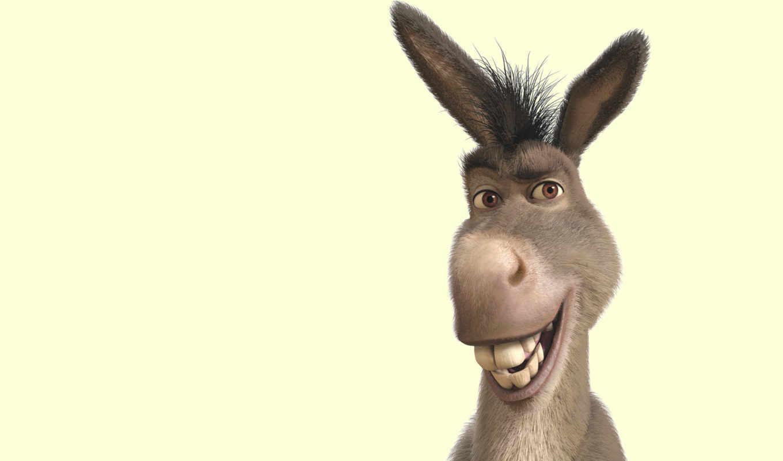 donkey, шрэк, улыбка, you, ухи,