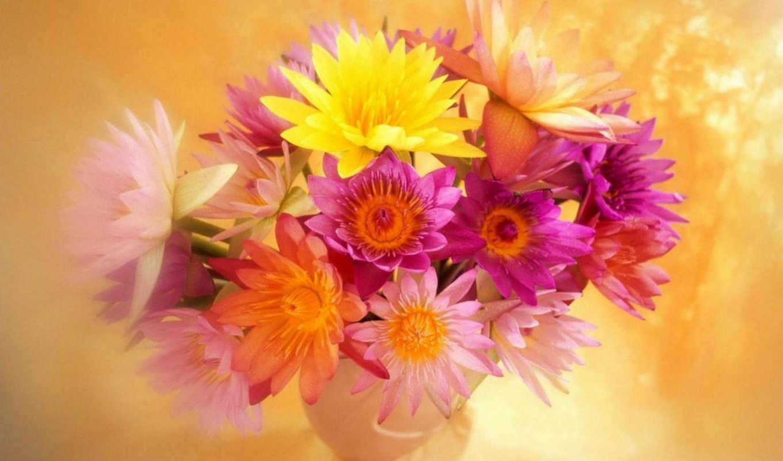 desktop, цветы, parede, papel, home, рождения, images, они, women, march, flowers, day, bright, flores, букет, днем, весны, mothers, ester, поздравляет, buna,
