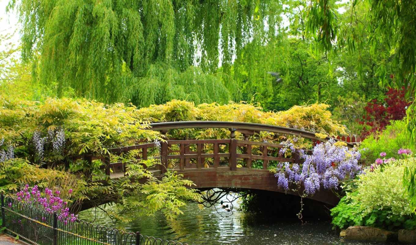 природа, мост, широкоформатные, картинка, флот,
