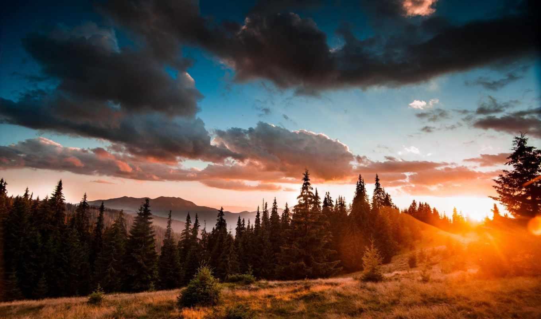карпаты, ukrainian, природа, горы, лес, красиво, небо,