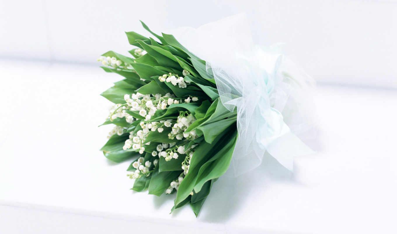 цветы, ландыши, широкоформатные, букет, цветов, оформление, everything,