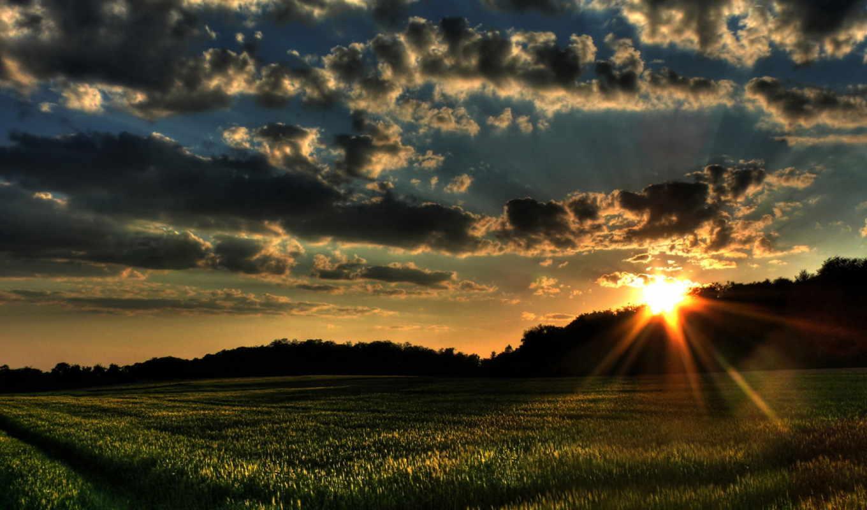 природа, пейзажи -, трава, закат, поле, oblaka, качестве, высоком, нояб, картинка,