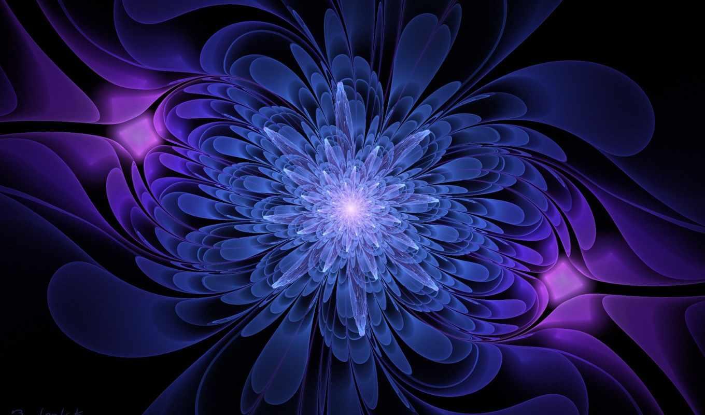 blue, цветы, black, сереневый, графика, color,