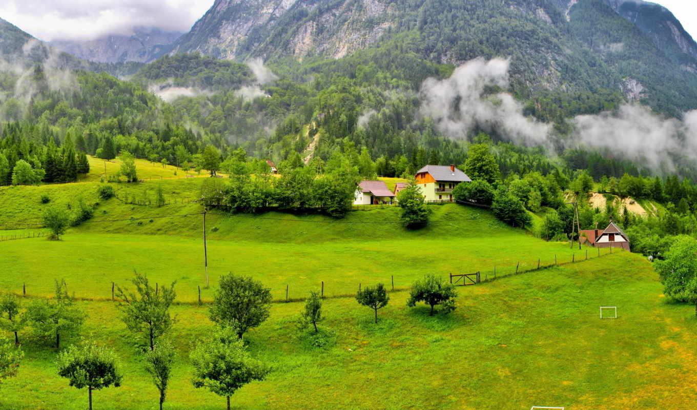 лес, горы, деревья, slovenia, трава, дома, облака,
