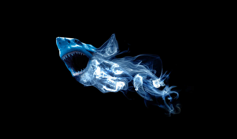 акула, абстракция, дым, картинка, картинку,