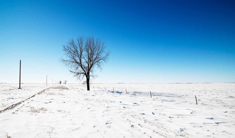 winter, снег, дерево, небо, trees, дорога,