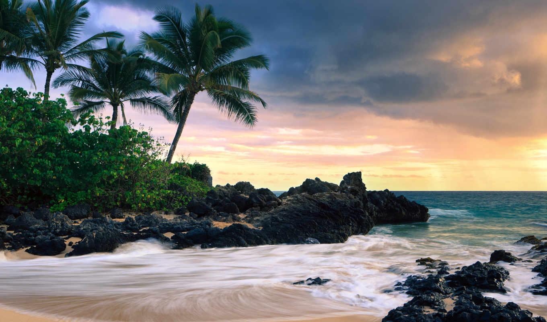 природа, desktop, пляж, фон, photoshop,