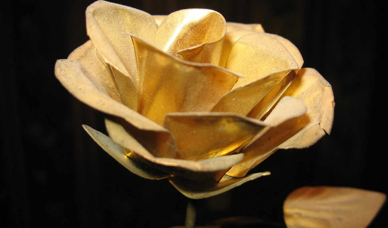 gold, роза, vintage,, клипарт, цветы, art,,