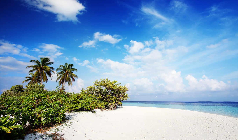 maldives, пляж, free,