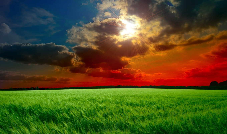 небо, oblaka, зеленые, тучи, закат, поле, sun, rays, колосья, трава,