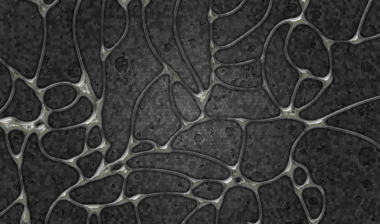серый, клетки, оболочки, картинка, изгибы, some, кнопкой, are, абстракция, vladstudio, ободранный, мыши, картинку, серая, обою, hd, wallpapers,
