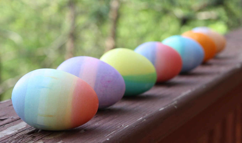 яйца, easter, праздник,
