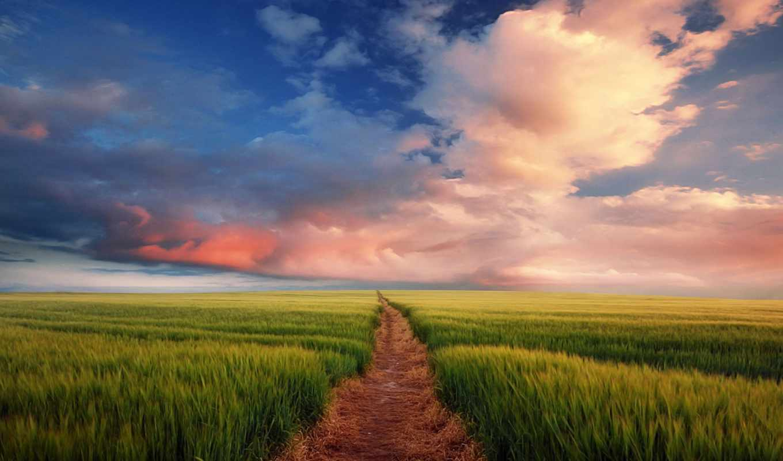 тропа, поле, небо, найти, свой, путь, бесконечная, дорога, широкоформатные, темы, смотрите,