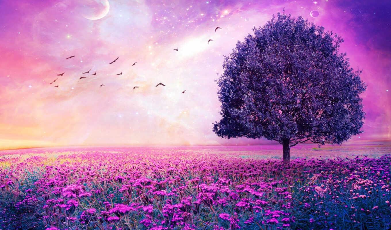 color, purple, фиолетового, темно, black, синего,