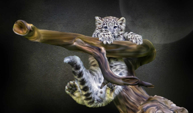 снег, ирбис, леопард, детёныш, photoshop,