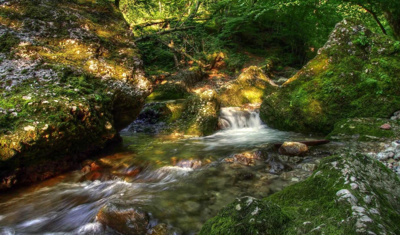 пейзаж, камни, ручей, мох, priroda, kartinka,