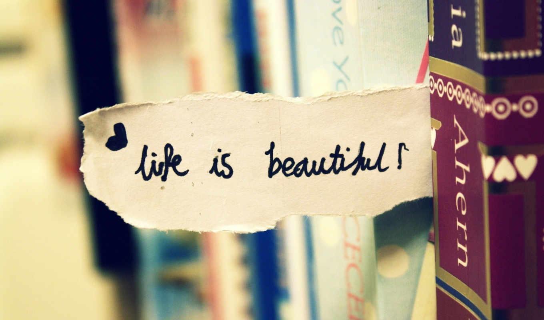 mcmorris, tim, life,