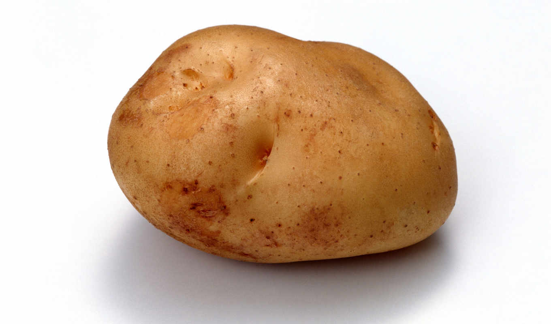 potato, гр, warzywa, нб,