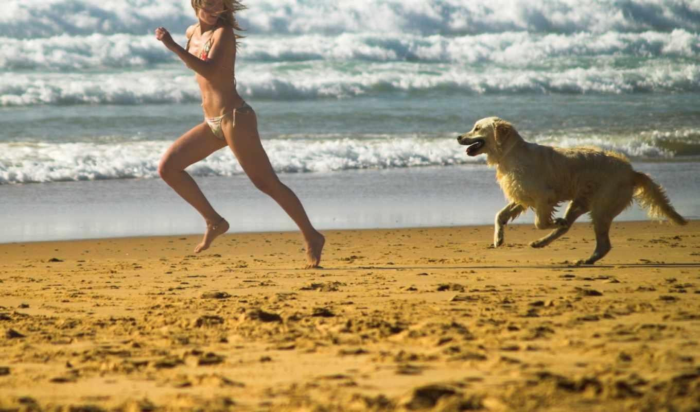 собакой, девушки, девушка,