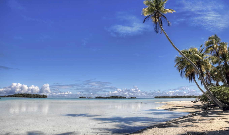 пляж, берег, совершенно, остров, palm, рай,