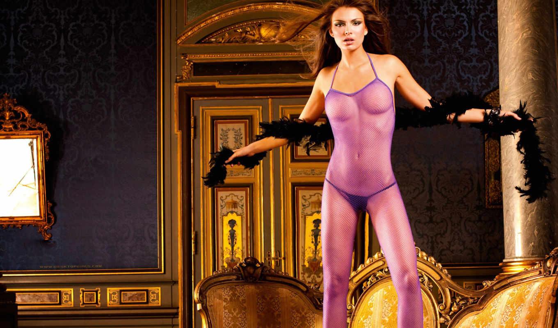 purple, the, bodystocking, fishnet, lingerie, baci