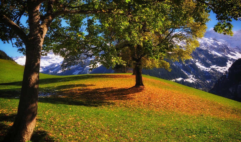 осень, ipad, горы, мини,