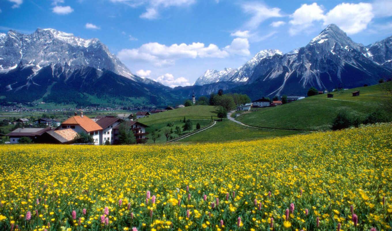 горы, франция, цветы, великолепие, countryside, франции, свой,