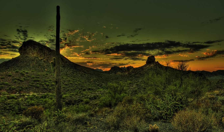 мексика, пустыня, кактус, закат, горы, hdr,