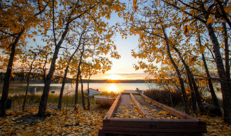 осень, sun, листья, желтые, деревья, канада, david, guetta, умирает,