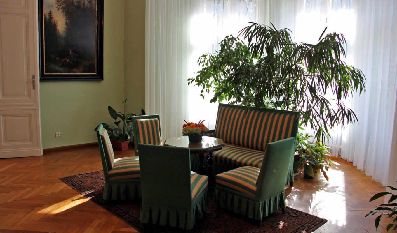 wnętrze, pałacowe, pokój, meble,