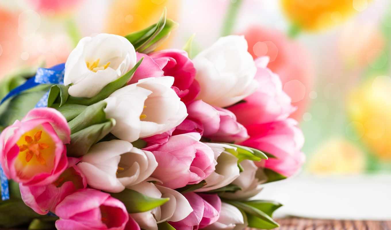 цветы, тюльпаны, букет, весна, розовые, белые,