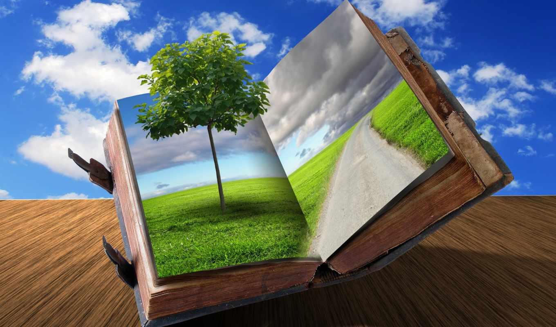книга, creativ, oblaka, дерево, дорога, креатив, разное, трава,