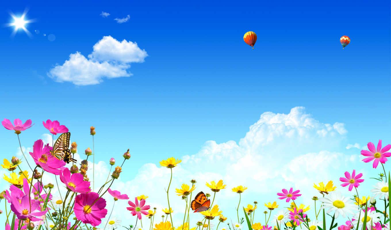 небо, шары, воздушные, цветы, бабочки,