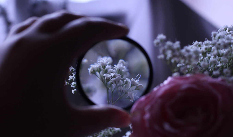 руки, под, цветочки, линзой,