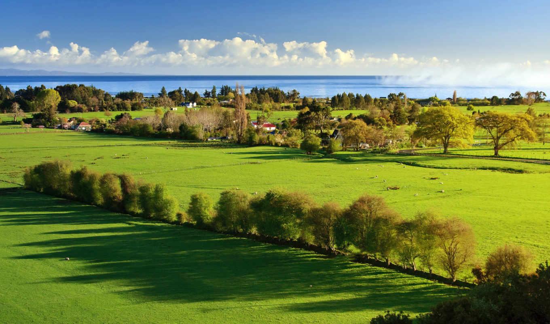 природа, зелёный, ландшафт, потрясающий, вернуться, сельская, жизнь, изображения, природы, поделиться,