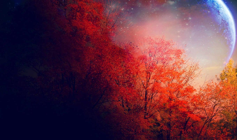 осень, луна, trees, звезды, красные,