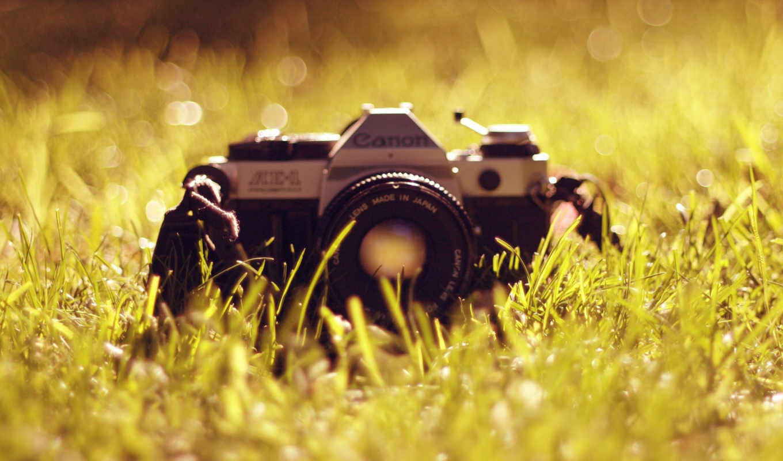camera, old canon, grass