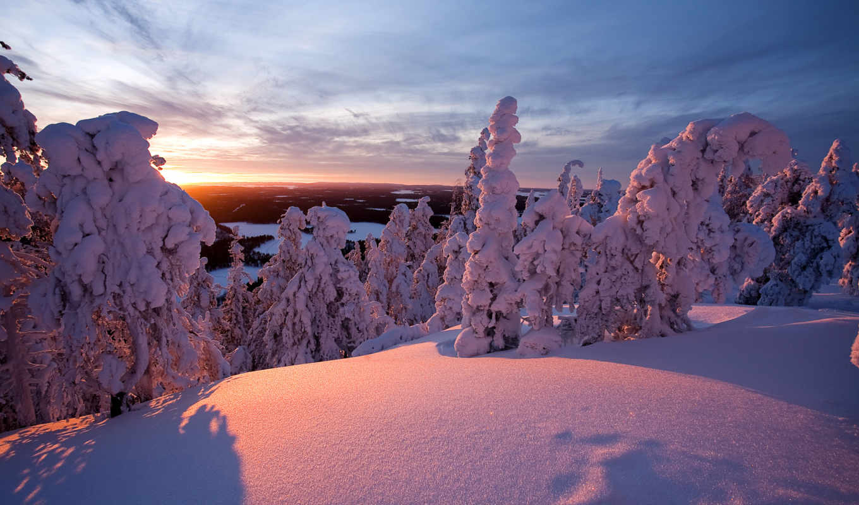 neige, soleil, hiver, arbres, coucher, finlande, fonds,