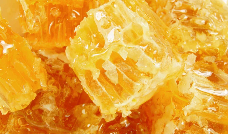honey, мед, соты,