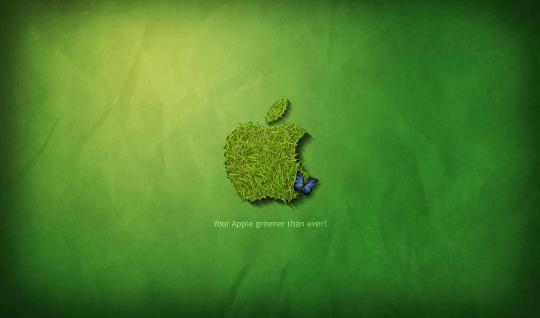 apple, лого, зелёный, трава, бабочка