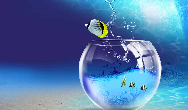 аквариум, рыбки, water, под, водой, pisces, art, большой, small,
