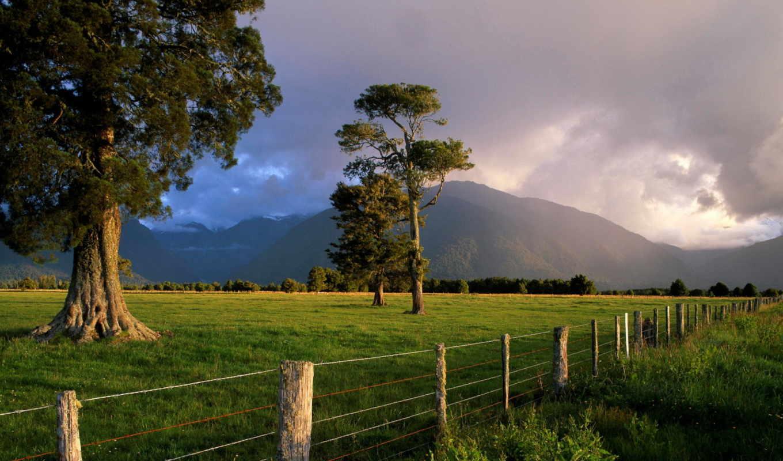 горы, новая, zealand, закат, трава, water, тучи, природа, остров, розовый, зелёный,